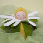 Copil floare 1