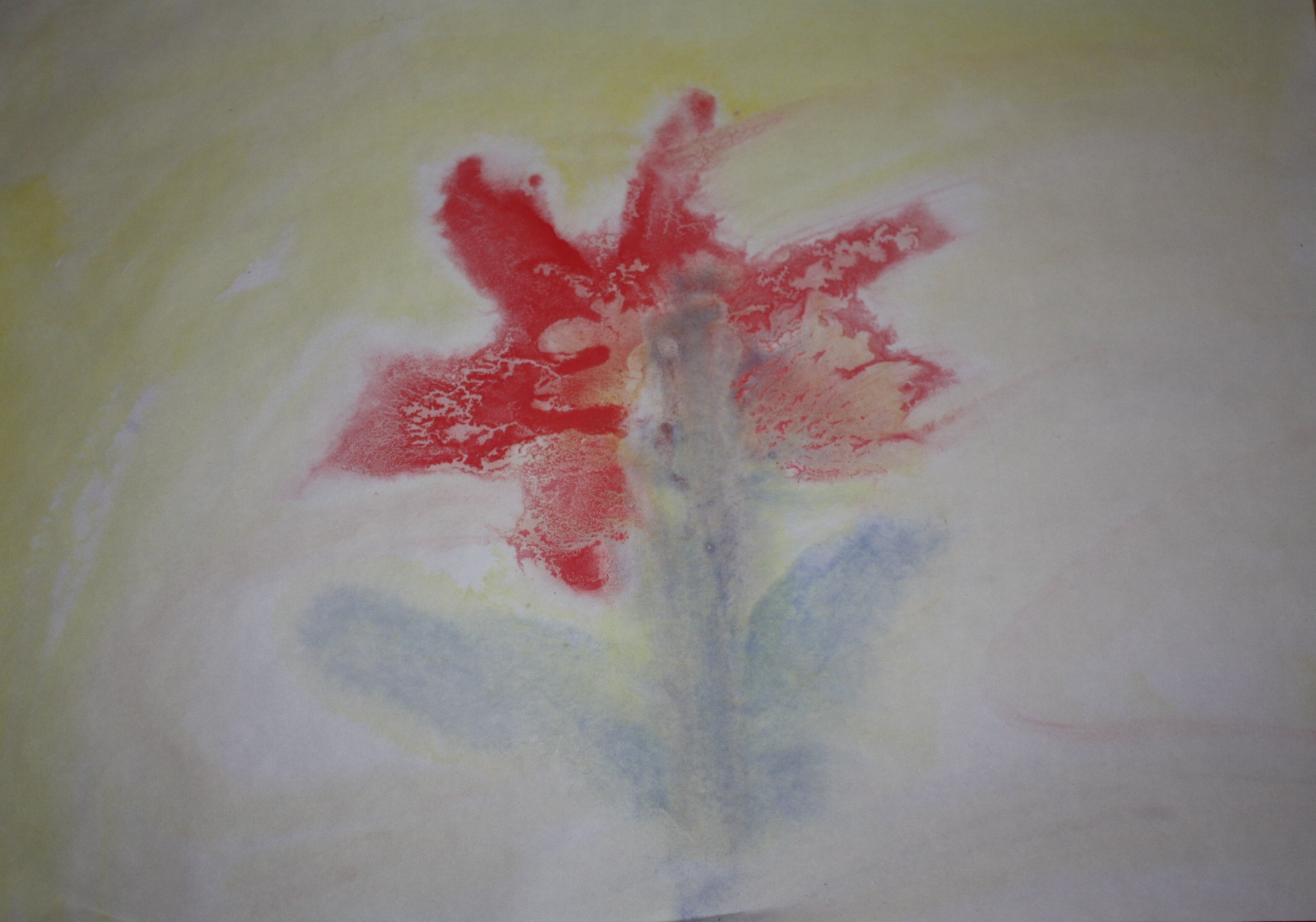 Floarea rosie